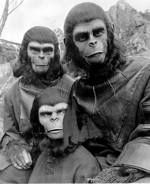 The War about to begin. Apes vs Humans - SofianHadi.com